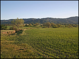 In the Santa Margarita Countryside
